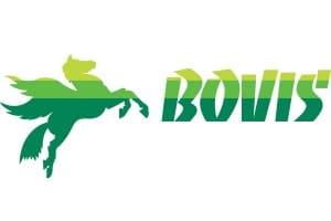 Bovis-300x200